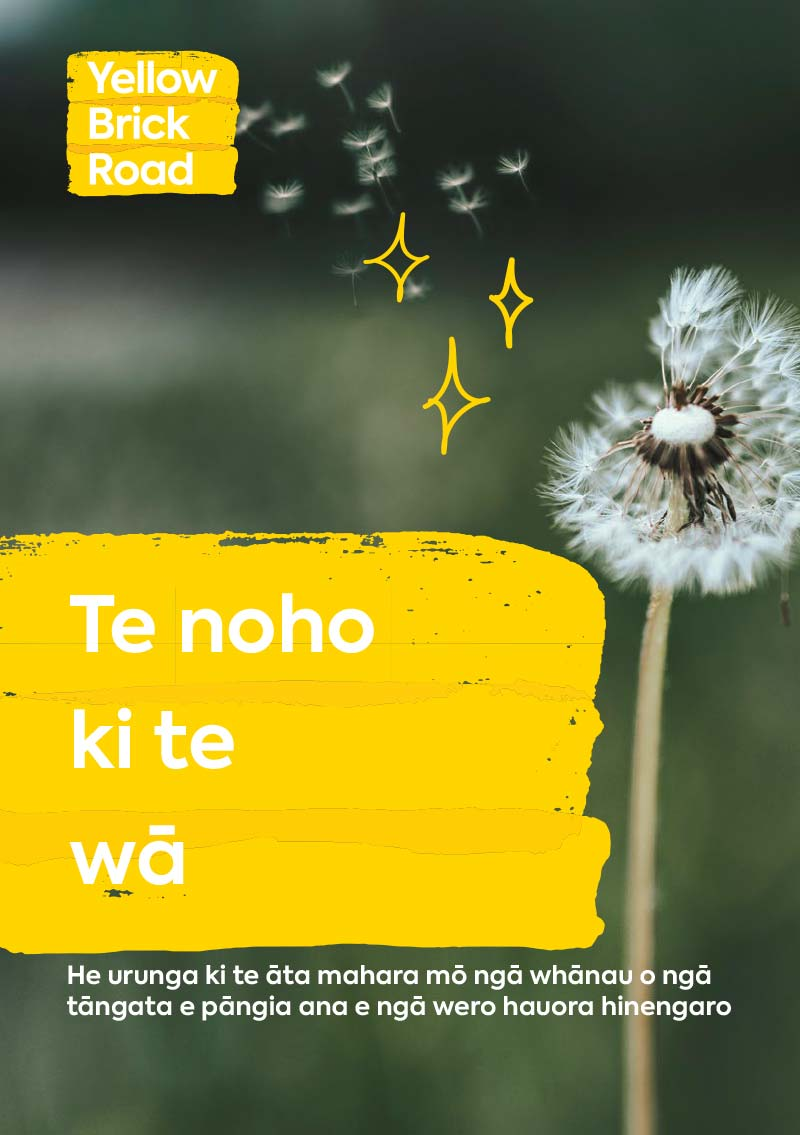 Maori Wellbeing Guides